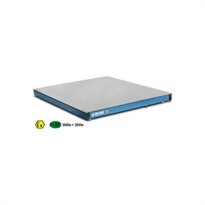 Floor scale platform 1000x1000x90 mm, 300kg/0,05kg