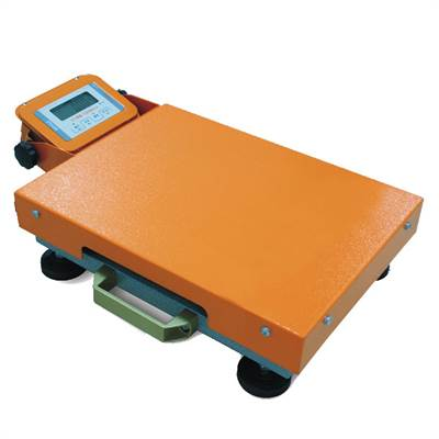 Portable scale 60kg/20g, rugged, handle, rechargeable battery.